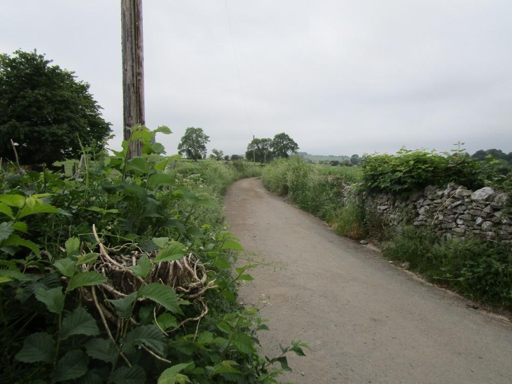 Riverside dog walk and dog-friendly refreshments, Derbyshire - White-Peak-dog-friendly-pub-and-dog-walk