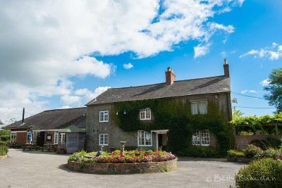 Dog-friendly B&B near Shaftesbury, Dorset - Driving with Dogs
