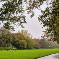 Marbury dog walks near Comberbach, Cheshire - IMG_20191012_145859.jpg