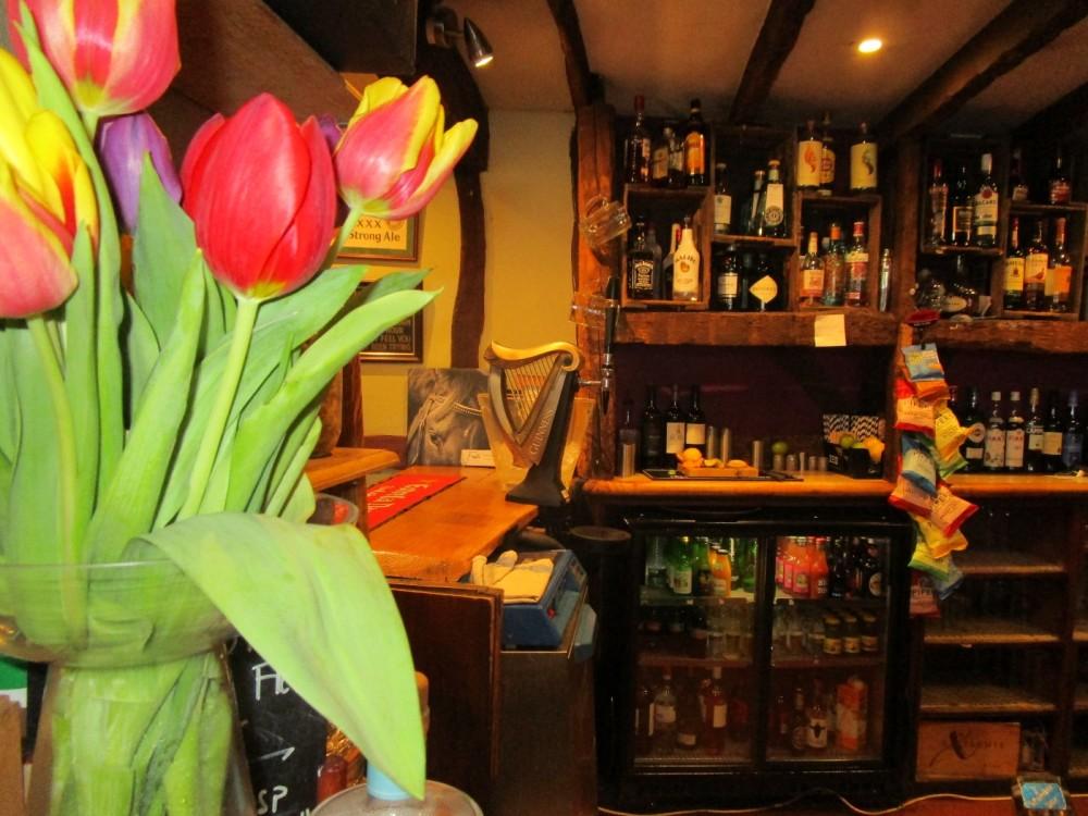 A24 dog walk and dog-friendly eating pub, West Sussex - Dog-friendly pub with dog walk Sussex.JPG