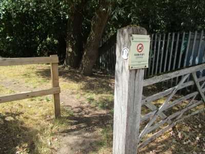 Yardley Hastings dog walk and dog-friendly pub, Northamptonshire - Driving with Dogs