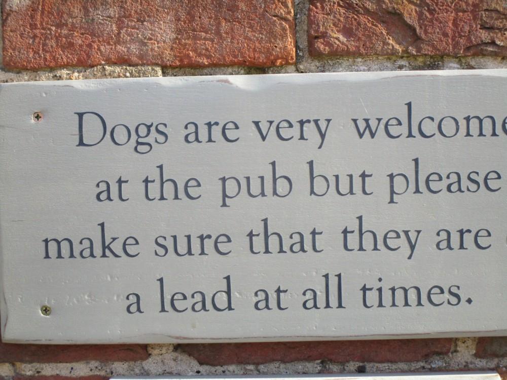 A25 dog-friendly pub and dog walks near Guildford, Surrey - Surrey dog-friendly pub and dog walk.JPG