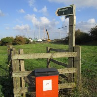 Oare marshes dog-friendly pub and dog walk, Kent - Kent dog-friendly pubs with dog walks