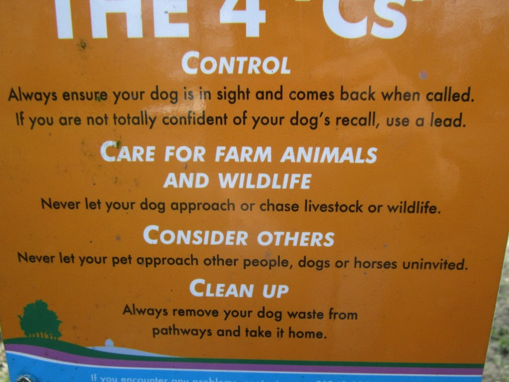 Forest Centre dog walks, East Sussex - Sussex dog walks.JPG