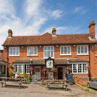 M27 dog-friendly pub and dog walk in the New Forest, Hampshire - Hampshire dog-friendly pub and dog walk