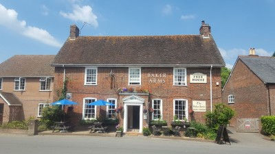Hambledon Hill dog walk and dog-friendly pubs, Dorset - Driving with Dogs