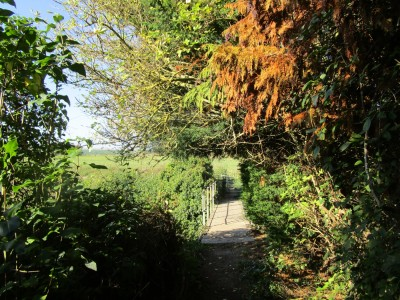 A257 dog-friendly pub and dog walk near Canterbury, Kent - Driving with Dogs