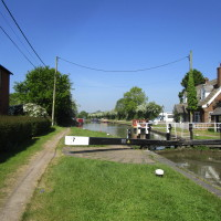 A5 canalside dog walk, Northamptonshire - Dog walks in Northamptonshire