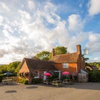 High Weald dog-friendly pub, East Sussex - Sussex dog-friendly pub and dog walk