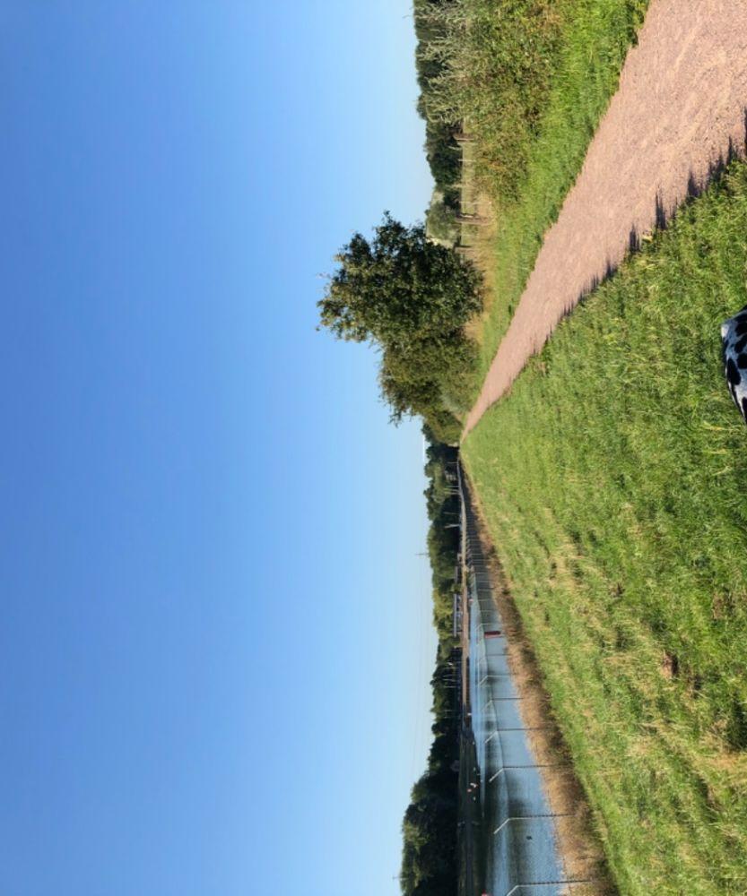 Circular dog walk in Banbury, Oxfordshire - Dog walk near Banbury.jpeg