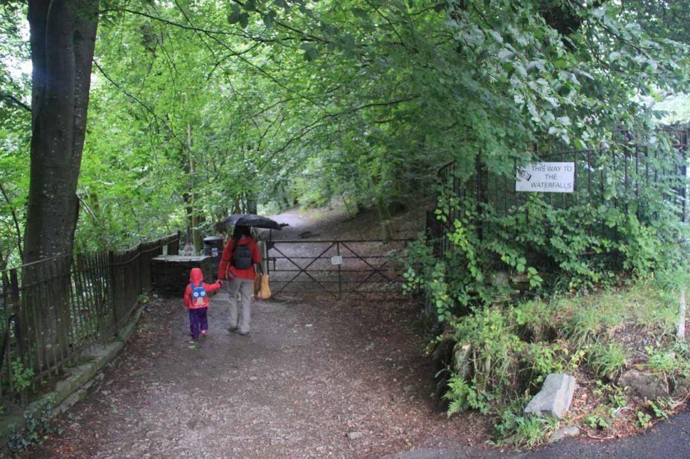 A591 Ambleside dog walks and dog-friendly pub and shops, Cumbria - Cumbria dog-friendly pub and dog walk