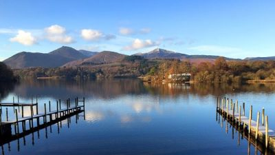 Popular Lake District waterside dog walk with dog beaches, cafe and boat rides, Cumbria - Driving with Dogs
