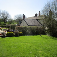 Dog-friendly pub and dog walks near Tillington, Herefordshire - Dog walks in Herefordshire