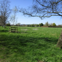 Village dog-friendly pub and dog walk, Herefordshire - Dog walks in Herefordshire