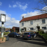 A44 rural dog walk and dog-friendly pub, Worcestershire - Dog walks in Worcestershire