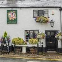 Frodsham dog-friendly pub and dog walk, Cheshire West - dog-friendly-pubs-cheshire.jpg