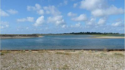 A286 dog walk near Bognor Regis, West Sussex - Driving with Dogs