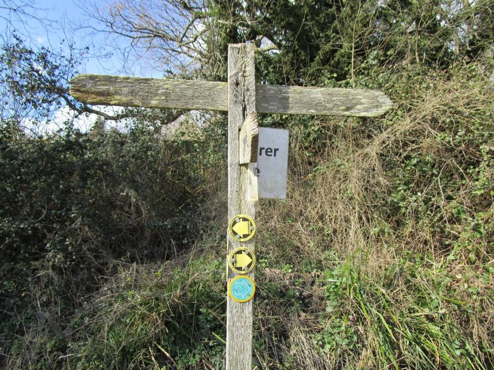 Bewl dog walk and dog-friendly pub, East Sussex - Sussex dog-friendly pubs and dog walks.JPG