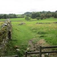 Rural dog-friendly pub and dog walk, North Yorkshire - Yorkshire dog-friendly pub and dog walk