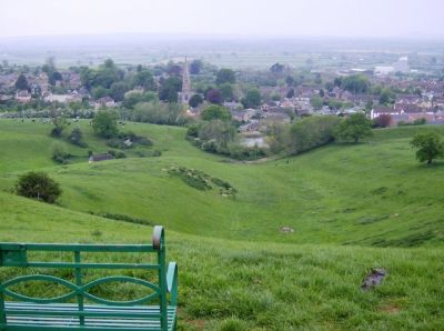 Dog-friendly pub and dog walk near Wincanton, Somerset - Driving with Dogs