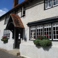 Dog walk and dog-friendly pub near Didcot, Oxfordshire - Dog friendly pub and dog walk near Wallingford.JPG
