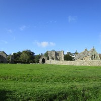 Ruined Abbey and dog-friendly cafe near Cardigan, Wales - IMG_5835.JPG