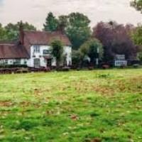 Chiltern Way dog-friendly pub and dog walk near Chorleywood, Hertfordshire - Herts dog-friendly pubs and walks.jpg