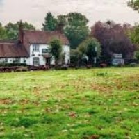 Chiltern Way dog-friendly pub and dog walk near Chorleywood, Hertfordshire - Herts dog-friendly pubs and walks.jpg