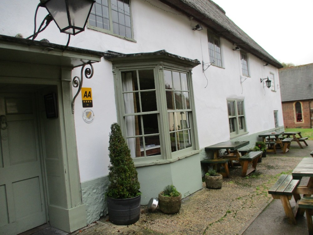 A354 heritage village with pub and dog walk, Dorset - IMG_0465.JPG
